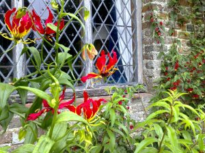 A window on the world: a detail from Sissinghurst gardens