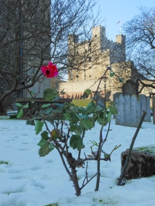 Detail of Rochester Cathedral (foreground) with Rochester Castle (background)